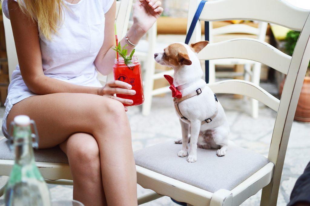Cocktail - właścicielka z psem